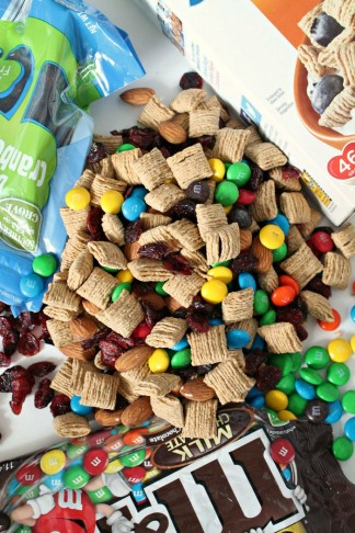 Healthy-Trail-Mix-With-Oatmeal-Squares-Cereal
