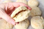 best-ever-biscuits